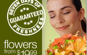 Brand Image for ProFlowers Freelance Copywriter Al Lefcourt